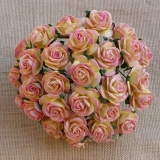 2-tone Champagne Pink Open Roses 20mm - 5 ks