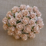Pale Peach Open Roses 25mm - 5 ks