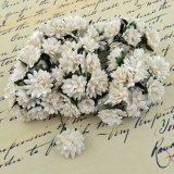 White Aster Daisy Stem Flower 15mm - 5 ks