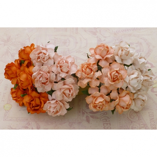 Mixed Peach Orange Cottage Roses 3cm - 4 ks