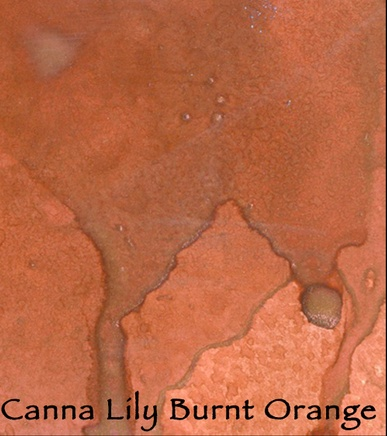 Canna Lily Burnt Orange/MAGICALS Shimmer Powders