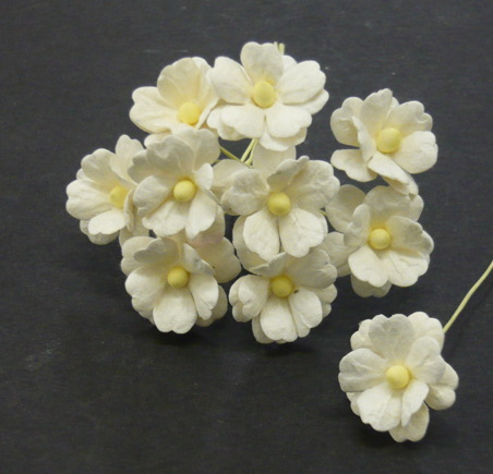 Ivory Sweetheart Blossom Flowers 15mm - 10 ks