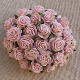 Peach Puff Open Roses 20mm - 5 ks