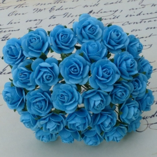 Light Turquoise Open Roses 25mm - 5 ks