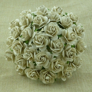 Dove Grey Roses 25mm - 5 ks