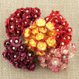 Mixed Red Sweetheart Blossom Flowers 10mm - 10 ks