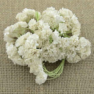 White Gypsophila Flowers 10mm - 10 ks