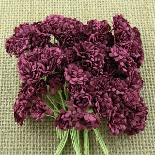 Burgundy Gypsophila Flowers 10mm - 10 ks