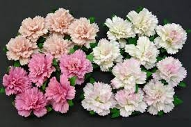 Mixed Pink Carnation Flowers 25mm - 4 ks