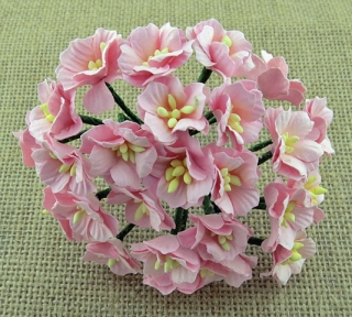 Light Pink Apple Blossoms 20mm - 5 ks